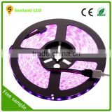 Waterproof 300led/roll 3528 led strip,led strip light waterproof,SMD 5050 lighting led,12 volt led lights,