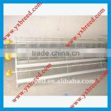 China factory automatic commercial poultry shed