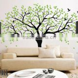 Custom Transparent Cute Wall Decal,Wall Stickers for Kids Removable Tree Wall Decal                                                                         Quality Choice