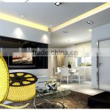 Festival Christmas Carnival Magic Color Waterproof LED Digital Strip Light SMD2835 CE RoHS