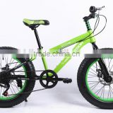 20 inch women beach cruiser bike / fat tire bike / 7 speed bicycle / aluminum alloy mountain bike frames