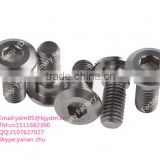 Alibaba selling high quality gr2 /gr5 titanium hex socket head cap screw for bicycle                                                                                                         Supplier's Choice