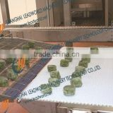 type B modular sushi conveyor belt