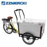 Pedal Assistant Large Carrying Family Electric Cargo Bike                                                                         Quality Choice