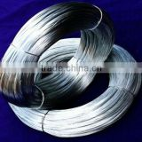 Professional Manufactures BWG20 GI Galvanized Wire
