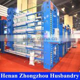 good quality layer poultry shed construction/special tools for chicken/equipment poultry algeria