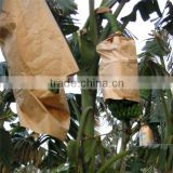 High Quality banana Paper Growing Protection Bag                                                                         Quality Choice