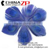 Gold Supplier ZPDECOR Bulk Sale Top Dyed Royal Blue Trimmed Peacock Feathers Eyes for Decoration