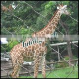 Anping Lutong mesh garden decoration wire animals for animal protection