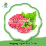 Supply IQF Frozen Black and Red Raspberry Whole with good quality