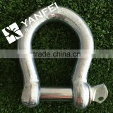 Carbon Steel /Stainless Steel Bow Type Shackle