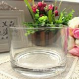 FALAJA cylinder glass vase planter pot for flower pot planter