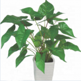 china wholesale artificial caladium tree bonsai for decoration with real looking leaves