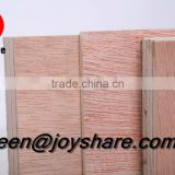 low price birch plywood