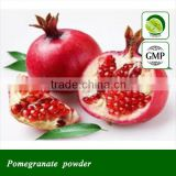 Best selling Pomegranate peel extract powder
