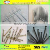 hot sale 2 inch polish wire nail , common iron steel nails product factory made in china