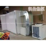 heat pump dryer for preserved fruit