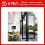 Simple Front Design Security Metal Aluminum Pivot Door Design
