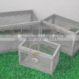 110661FD-T Metal wire storage trunk