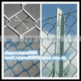 Best price chain link wire mesh/hot dipped chain link fence / por inmersion en caliente cerca de alambre galvanizado