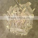 Dried Licorice Root