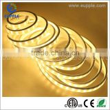 Constant Current Waterproof SMD 2835 3528 5630 5730 5050 Strip LED Flexible RGBW LED Strip Light