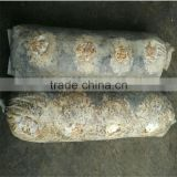 Dried Log Flower Shiitake Mushrooms Logs Whole Low Price For Sale