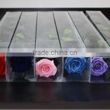 Hot Selling Valentine's Gift Real Floral Long Lasting Natural Preserved Flower Roses
