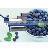 Fruit and vegetable fresh green leaves extractor/press juicer/ginger screw press machine