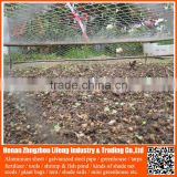 wholesale hdpe anti bird netting , pe protective bird hunting device trap net , plastic plant fruit support safety net wire mesh