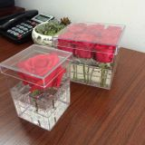 Clear Acrylic Display Box for Flowers