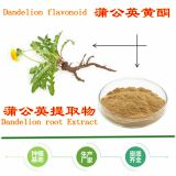 Factory supply Dandelion Root Extract Powder with flavonoid