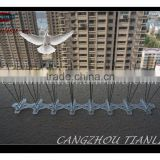 Good Quality Stainless Steel Bird Spikes,Anti Pigeon Spikes,Bird Spikes Bunnings Direct Buy China-----TLD5003W5-33