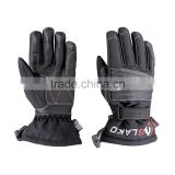 Motoebike Gloves
