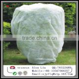frost protection garden plant cover, PP ground cover