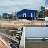 chicken cages equipment for poultry farm