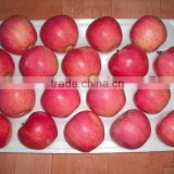 New arrival Chinese fresh red apple red Qinguan apple with best price
