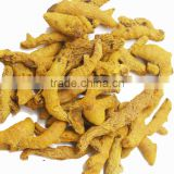 VIETNAM FRESH TURMERIC GOOD QUALITY