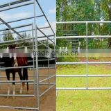 Breeding cattle and sheep fence / galvanized pipe fence