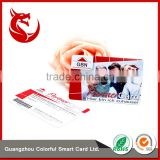 Guangzhou new type 4C/4C color custom offset printing barcode card                                                                         Quality Choice