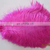top sale 65-70cm pink ostrich feather from south Africa