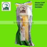 Vacuum Packed White Sweet Corn On Cob Fresh Non-GMO No Fat Prevent Cholelithiasis