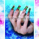 Decorative Painting pictures nail posters nail art designs