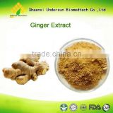 Free samples ginger gingerols powder, China supplier wholesale ginger extract 1% 5% gingerols