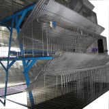hot sale stainless steel material automatic poultry farm cages / rabbit farm cages for sale