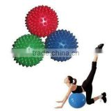 2014popular gym ball set pilates ball set