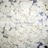 IQF frozen Garlic clovewith best quality and hot price