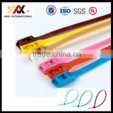 Color Nylon 66 Cable Tie with Label