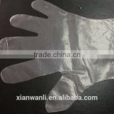 PE glove/transparent plastic glove for food industry