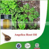 Natural & pure angelica root extract with competitive price, factory supply angelica root oil